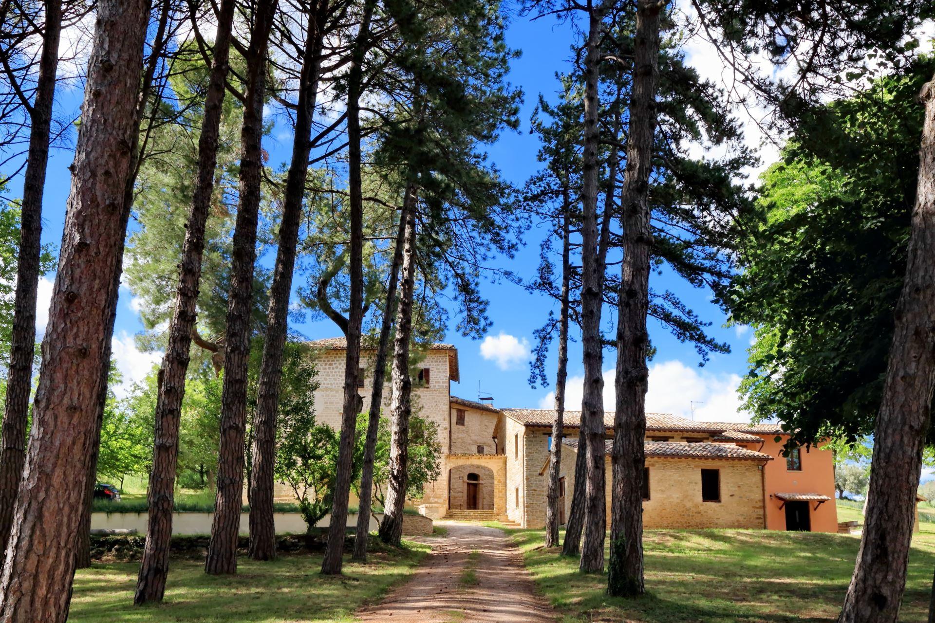 Villa ai Pini